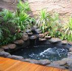kolam ikan14