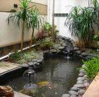 kolam ikan6